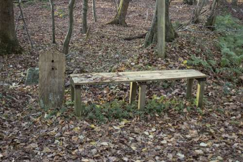 Wooden Bench Bank Nature Rest Peace
