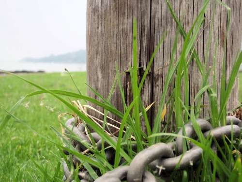 Wooden Pole Chain Grass Nature Green Chained