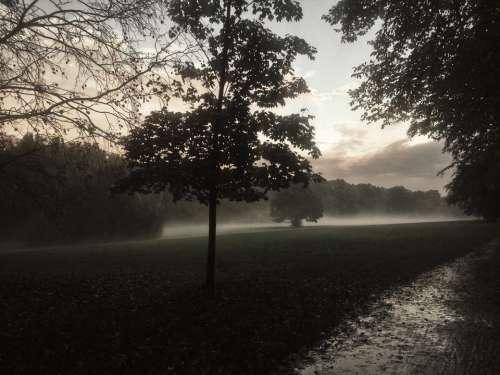 Wroclaw Fog Landscape Mystery Rain