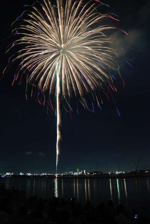 Yellow Colorful Flower Fireworks Sky Night Japan