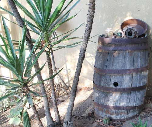 Yucca Barrel Rustic Antiques Garden Old Wooden