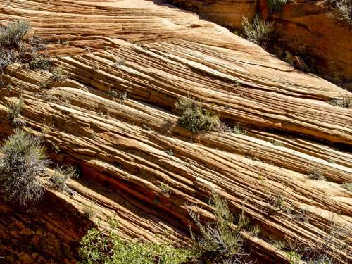 Zion National Park Utah Usa Rock Formation Red