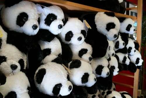 Zoo San Diego Animals Plush Toy Panda