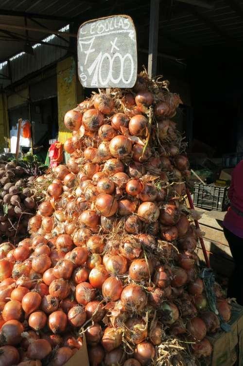 Onions at La Vega Market, Santiago, Chile