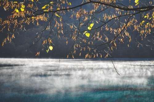 Daybreak on Five Flower Lake, Jiuzhaigou, Sichuan, China.