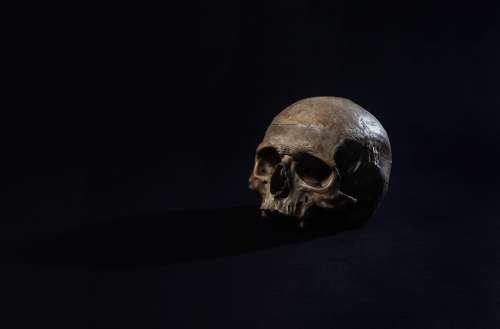 A Human Skull Sits In A Dark Room Photo