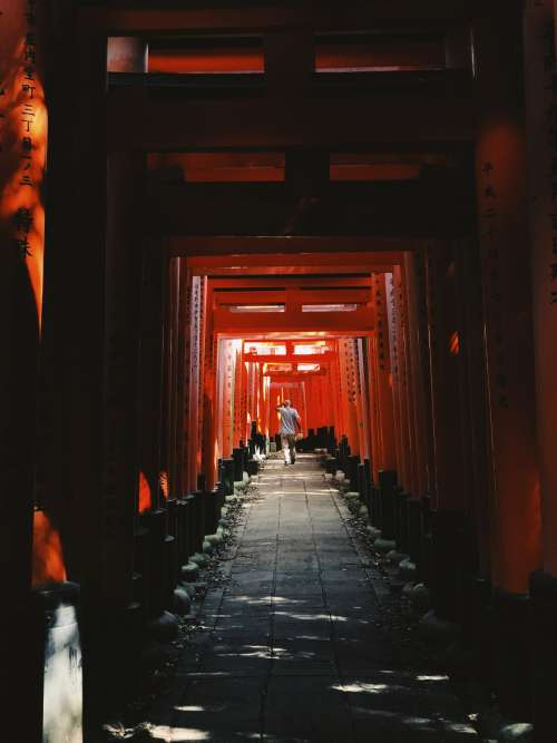 A Man Wanders Through Red Arches In Japan Photo