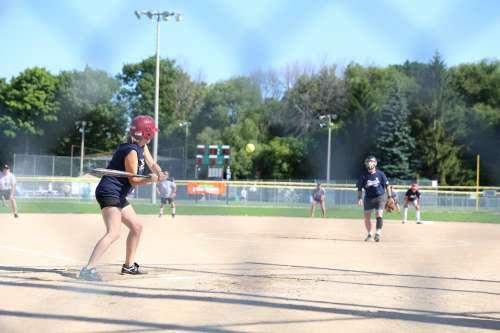 Adult Baseball Game Photo