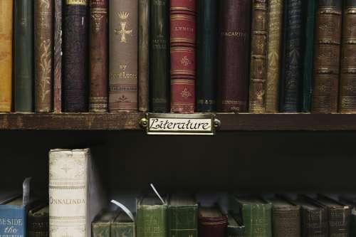 Antique Book Store Shelves Photo