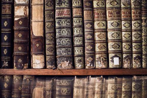 Antique Books On A Library Shelf Photo