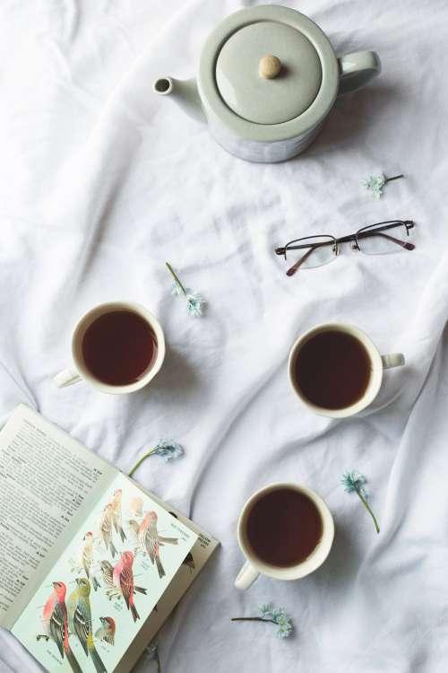 Bird Book And Tea Time Photo