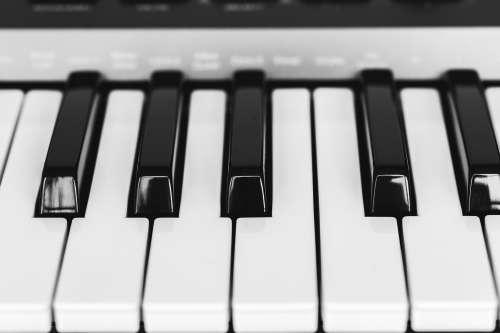 Black And White Piano Keys Close Up Photo