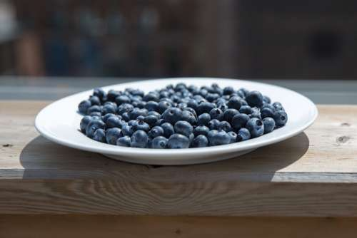 Blueberry Plate On Patio Photo