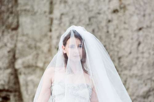 Bride Under Wedding Veil Photo