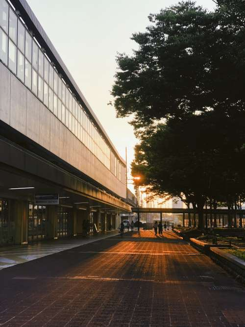 Bus Terminal In Early Morning Light Photo