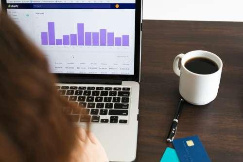 Checking Sales Data Photo