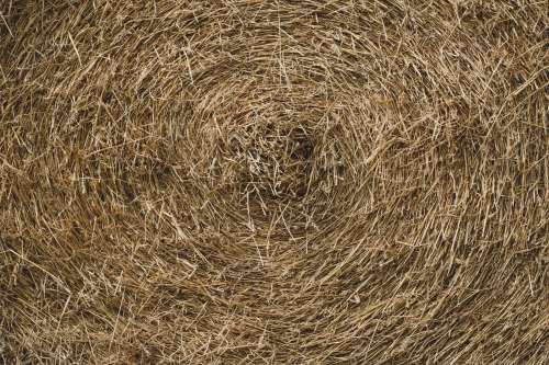 Circular Hay Bail Texture Photo