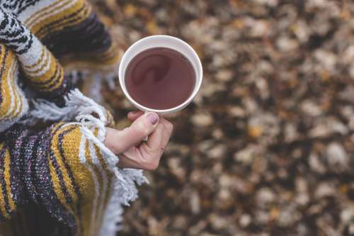 Cup Of Tea In Autumn Photo
