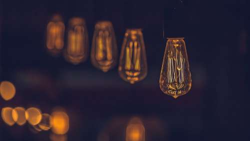 Edison Light Bulbs Photo