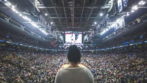 Fan At Basketball Game Photo