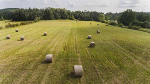 Farm Land & Hay Bails Photo