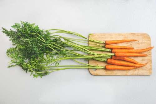 Garden Carrots Photo