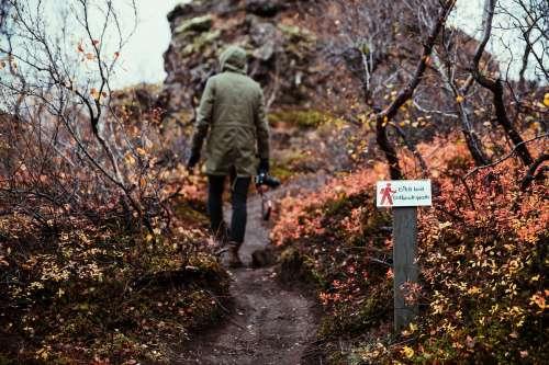 Hiking Through The Bush Photo