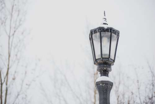 Lamppost In Winter Photo