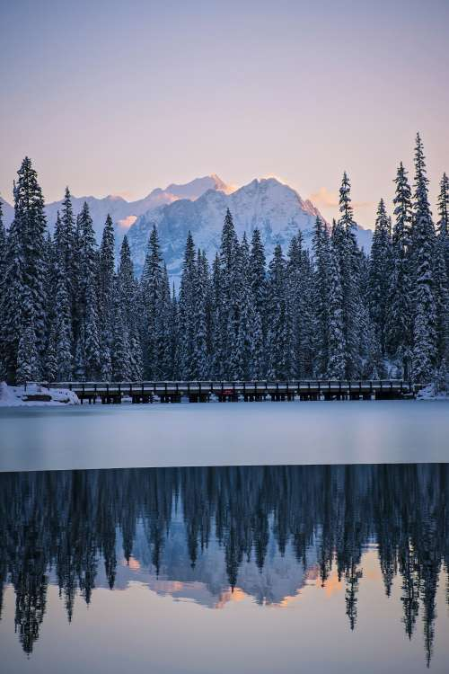 Line Of Frosty Pines Separates Frozen Lake From Mountains Photo