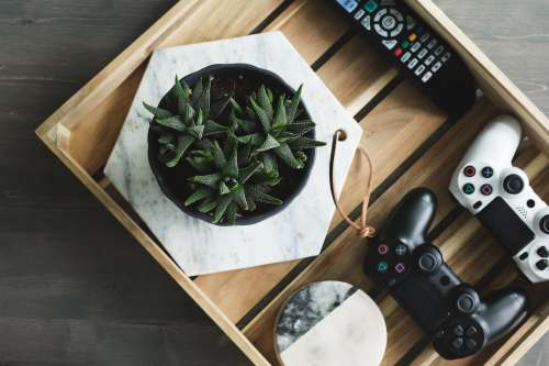 Livingroom Tray With Plant And Game Controllers Photo