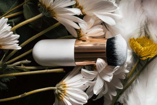 Makeup Brush In Flowers Photo