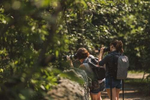 Nature Photographers Shooting Photo