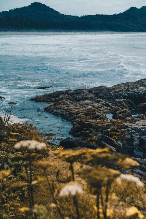 Pacific Ocean Shoreline Photo