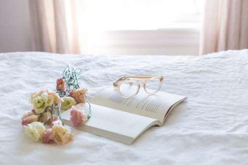 Reading Still Life Photo