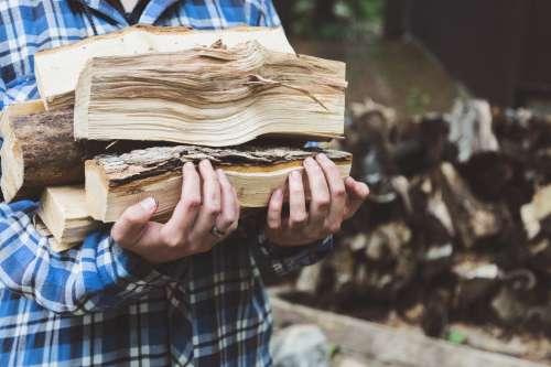 Replenishing The Woodpile Photo