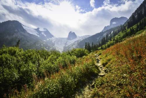 Rocky Mountain Path Framed By Greenery And Bathed In Sunlight Photo