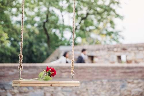 Romantic Rose On Swing Photo