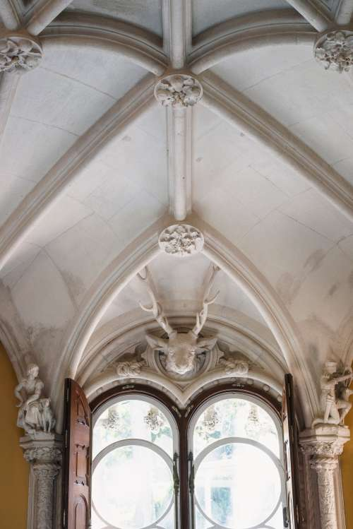 Sculpted Ceiling Over Ornate Windows Photo