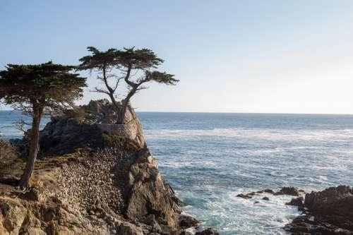 Sea Ocean Waves Coast Photo