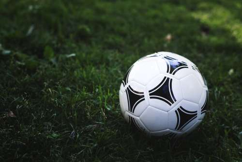 Soccer Ball In Green Grass Photo
