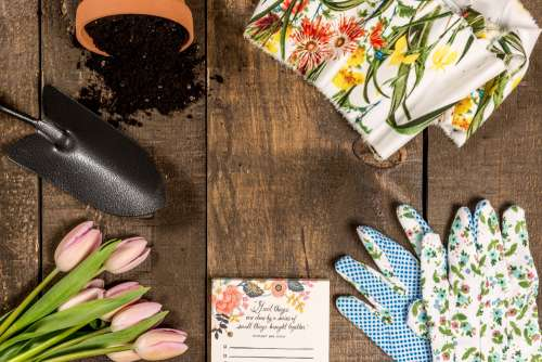 Spring And Garden Theme Flat Lay Photo
