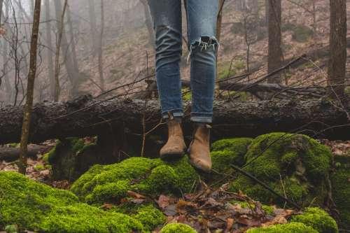 Standing In Woods Photo