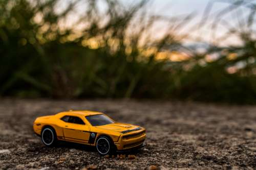 Toy Sports Car With Tall Grass Photo