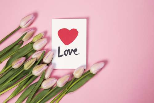 Tulip Flowers With Love Card Photo