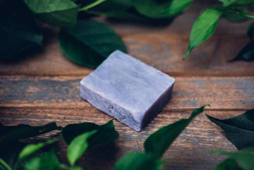 Violet Soap With Leaves Photo