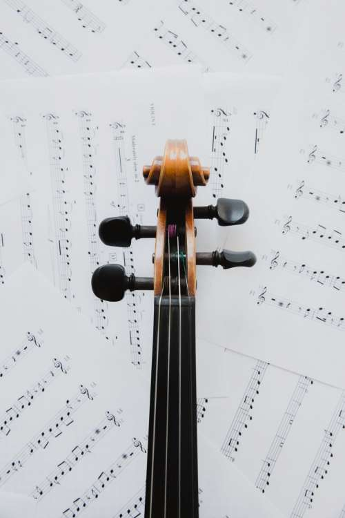 Violin Neck On Music Sheets Photo