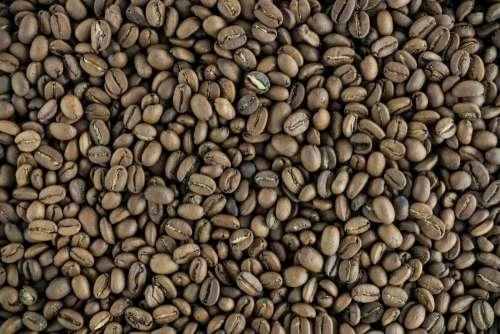Full frame of lightly roasted coffee beans