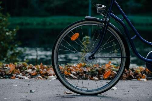 Bike's wheel