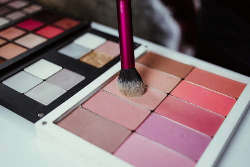 Blush palette and a brush