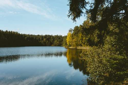 Calm lake surrounded by forest 2